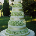 Green Cake4 150x150 Party Simplicity Saint Patricks Day Wedding Celebrations