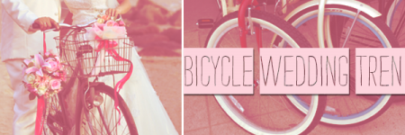 Bicycle Wedding Trend